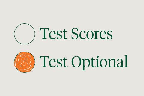 test_optional_480x320-1