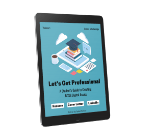 professional ebook