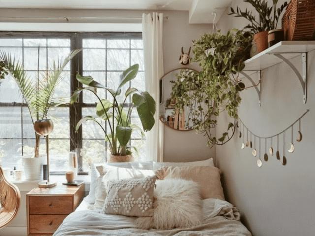 2021 Dorm Room Trends