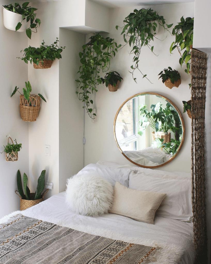 Plants around bed